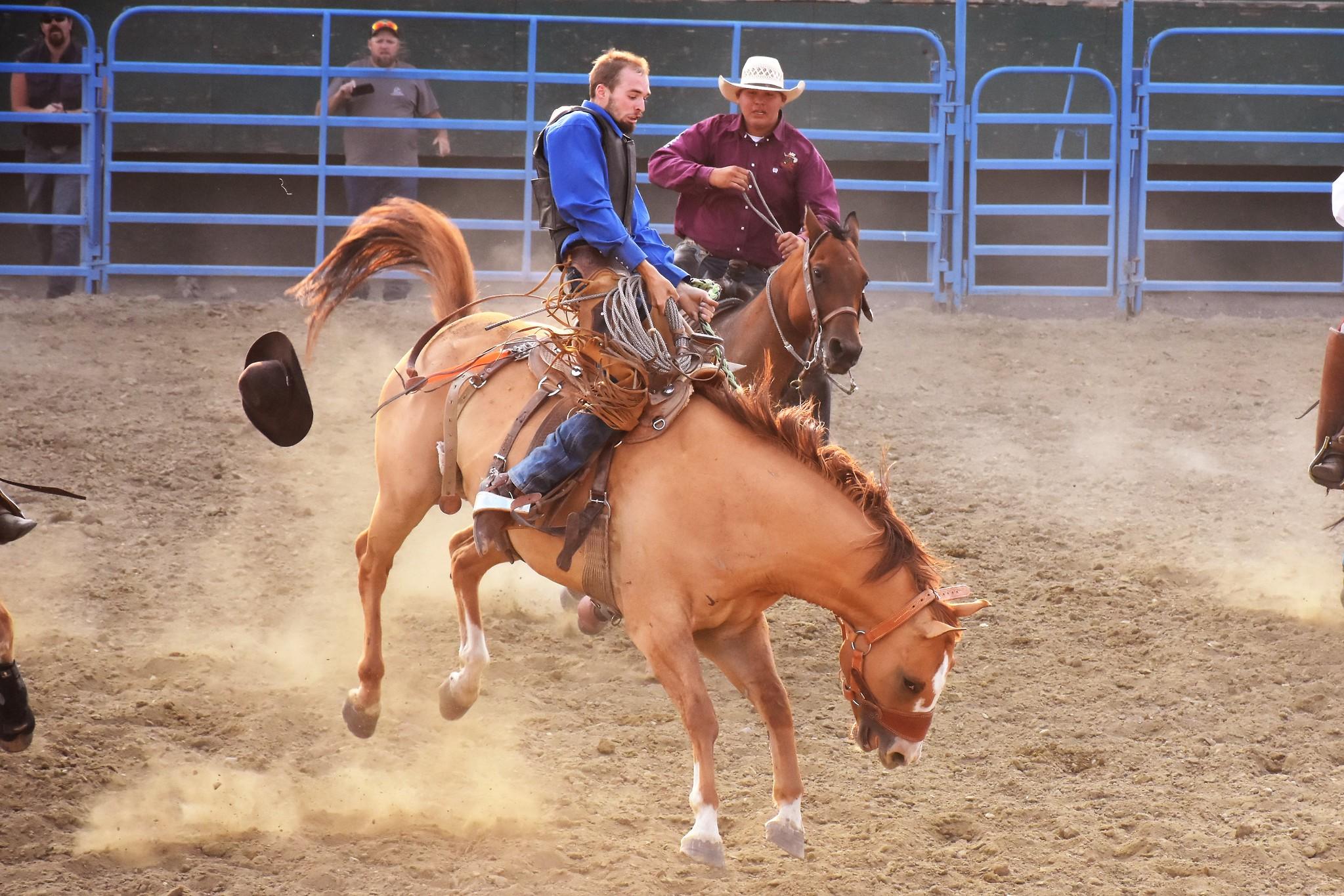 Last Hoorah Ranch Rodeo