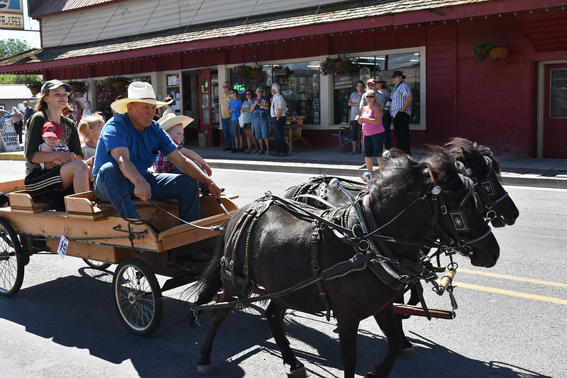 Horse drawn wagon in the Eagle Valley Days Parade