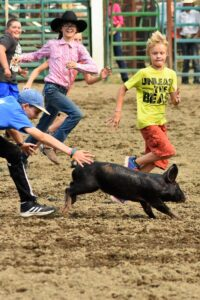 Greased Pig Chase at the Baker County Fair