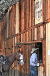 Cowboy and his horse at the Baker COunty Fair
