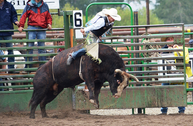 100th annual Baker COunty Fair and Panhandle Rodeo in Halfway Oregon